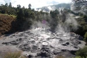 Rotorua2