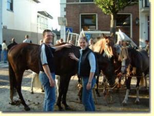paarden4